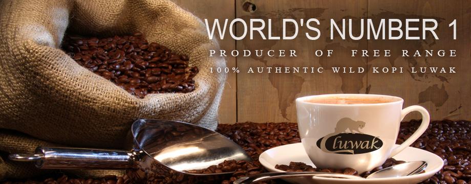 Kopi Luwak Coffee Best Tasting Coffee Brand Shop Kopi